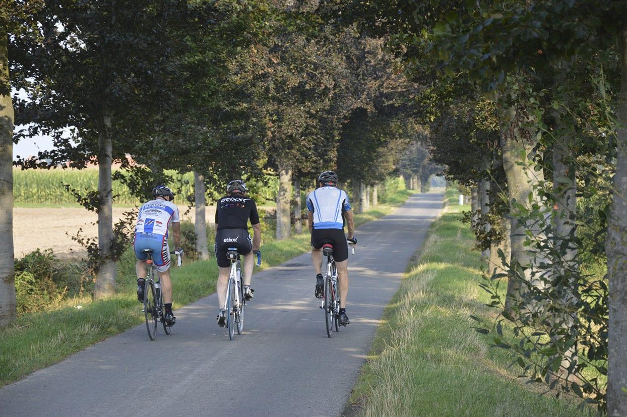 Wandelen En Fietsen In De Vlaamse Ardennen